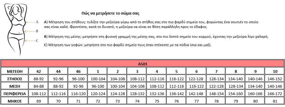 Μεγεθολόγιο Α501